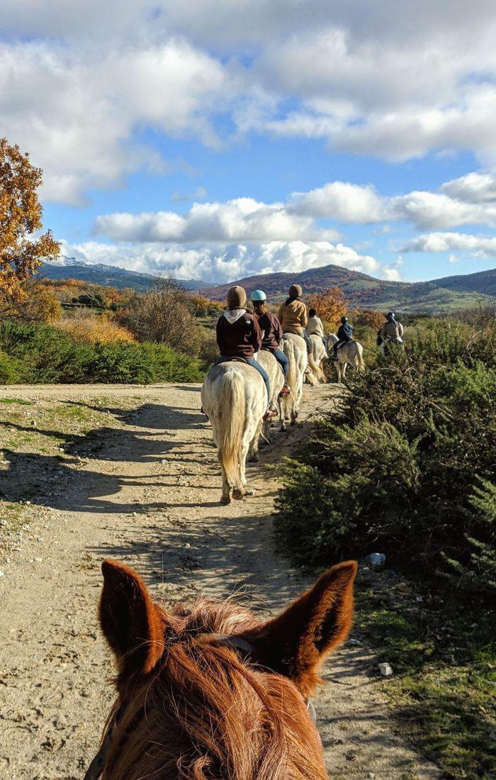 horse riding 01